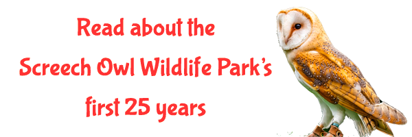 Read about The Screech Owl Wildlife Park's first 25 years